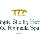 dingle-new-logo